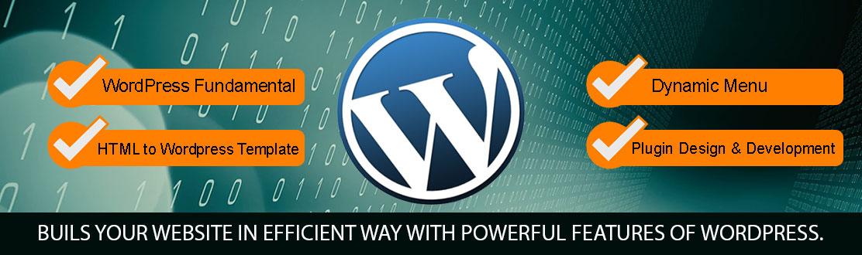 best institute for WordPress Development