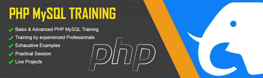 best institute for PHP Development